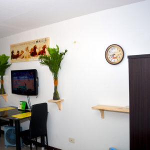 Fulluy furnished condo